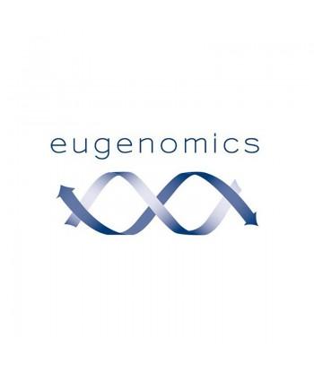 Eugenoxy 100 ml